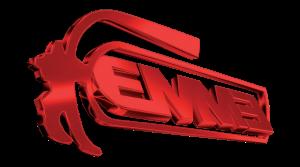 logo_emme